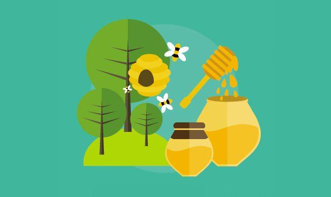 Пчела - пчеловодство. Лекции по пчеловодству
