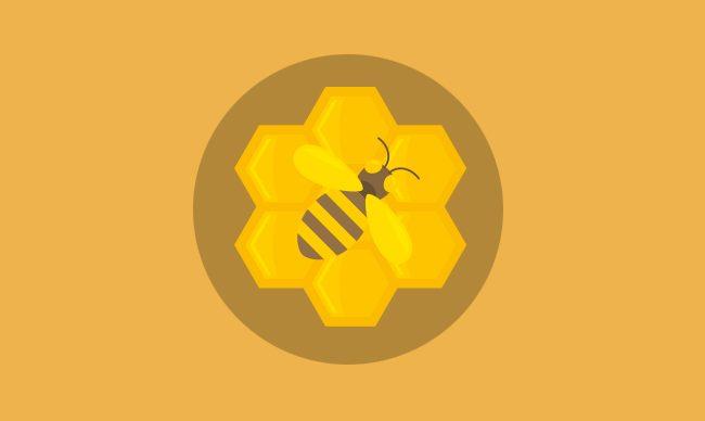 Матководство.Пчеловодство